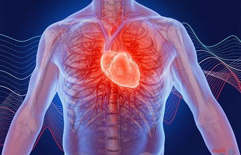 هل تشفى عضلة القلب