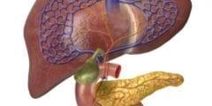تنظيف الكبد من السموم و أسباب حدوثها