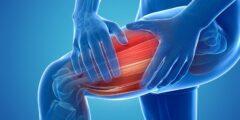 علاج ضمور العضلات بالأعشاب.. في أي الدول يكون العلاج أفضل!