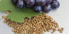 فوائد بذور العنب المذهلة.. لن تتخيل فائدتها